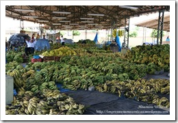 2008 10 Mercado do Produtor (15)