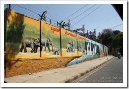 11 04 India aa Bangalore (06)