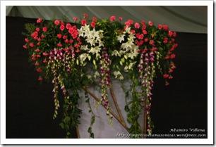 11 04 India b Casamento Castelo Bangalore (37)