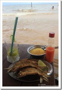 praia de aramanai _ tapajos (5)